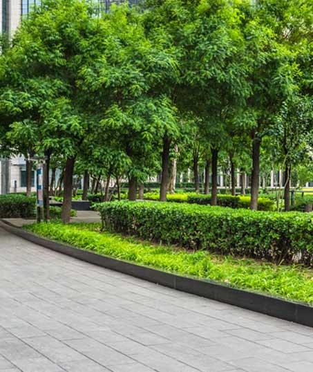 Evergreen Lawncare and Landscape Inc. Commercial Grounds Maintenance