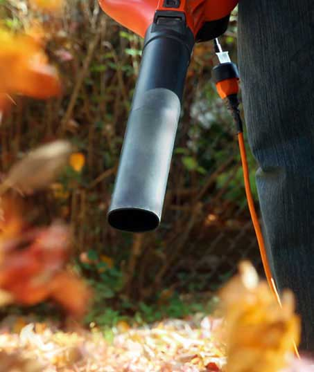 Evergreen Lawncare and Landscape Inc. Leaf Removal
