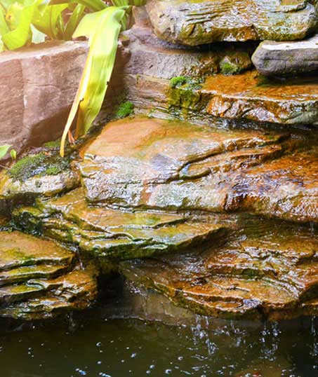 Evergreen Lawncare and Landscape Inc. Commercial Water Features
