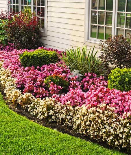 Evergreen Lawncare and Landscape Inc. Garden Design