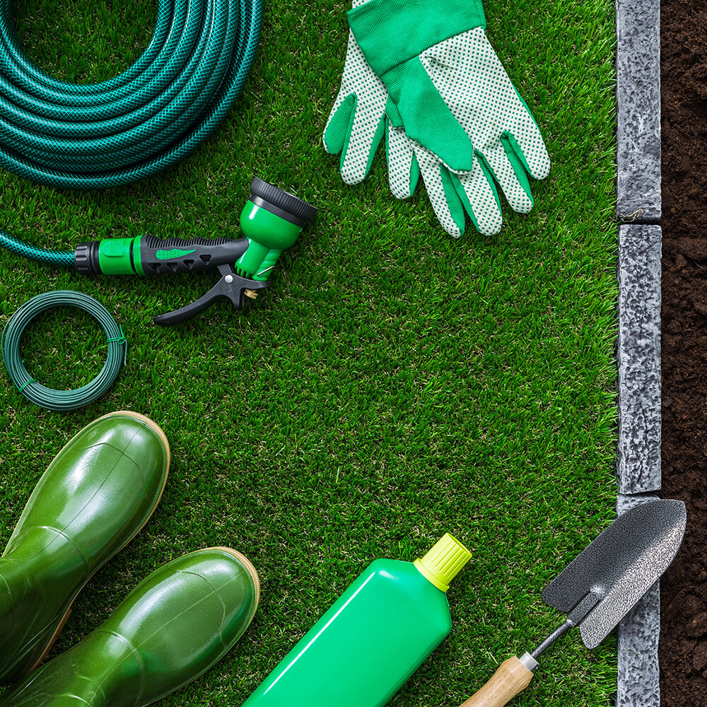 Cleanup and Maintenance Service